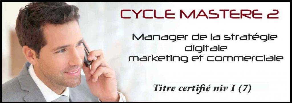 Master marketing à Montpellier
