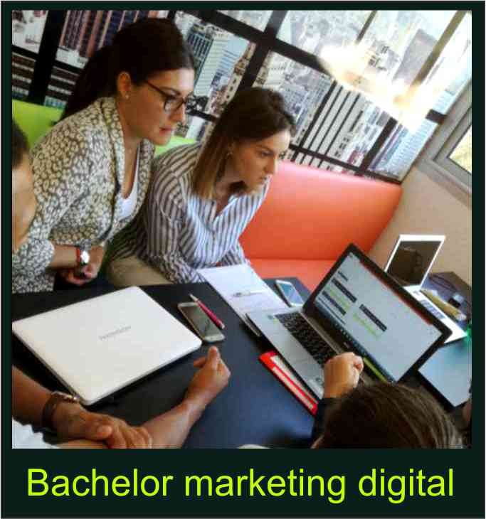 bachelor en marketing